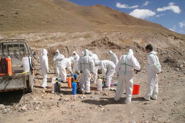内蒙古发现3个鼠疫疫点